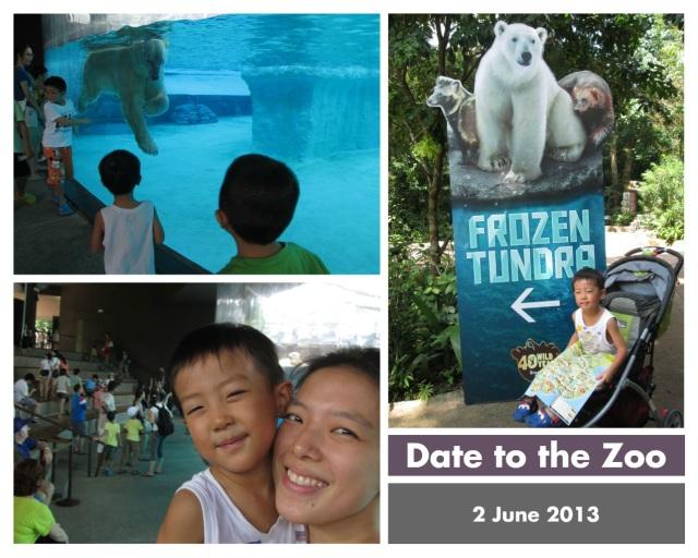 Zoo 2 Jun 13