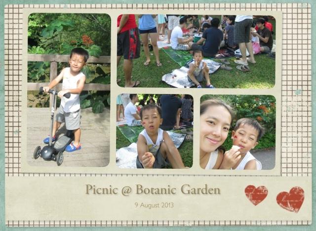 Picnic 9 Aug 13