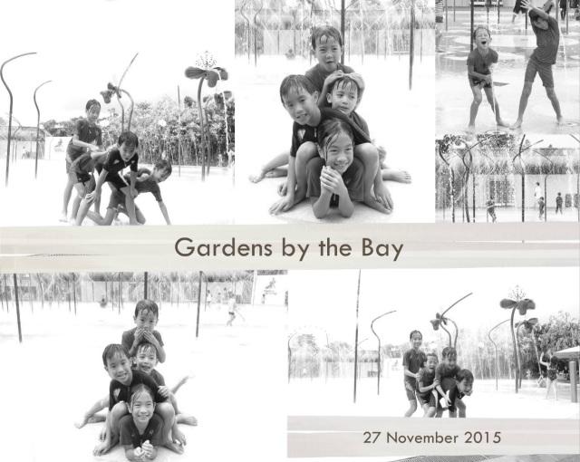 Gardens 27 Nov 15