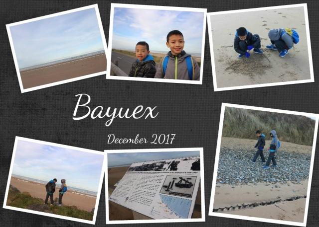 Bayuex12