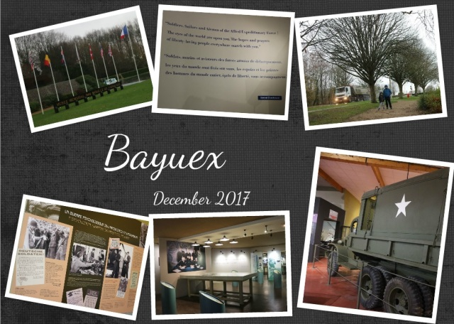 Bayuex6